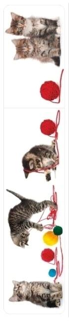 Mačkice knjiga
